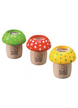 Mantar Kaleydoskop (Mushroom Kaleidoscope)